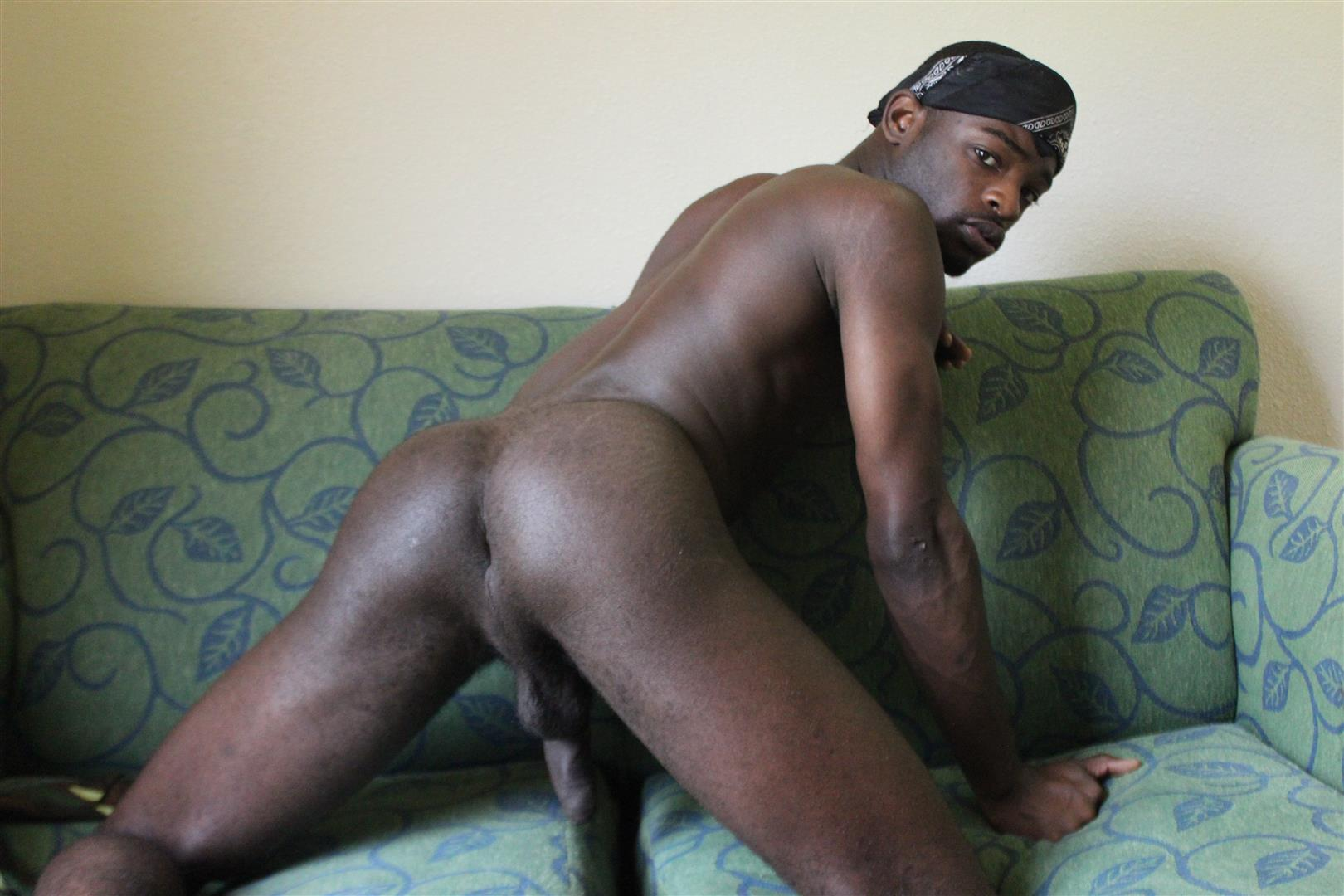 Gay black dick videos